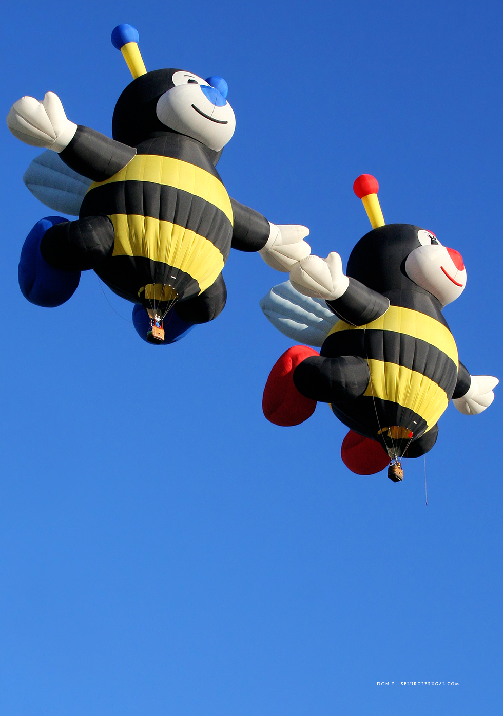 2020 Albuquerque International Balloon Fiesta