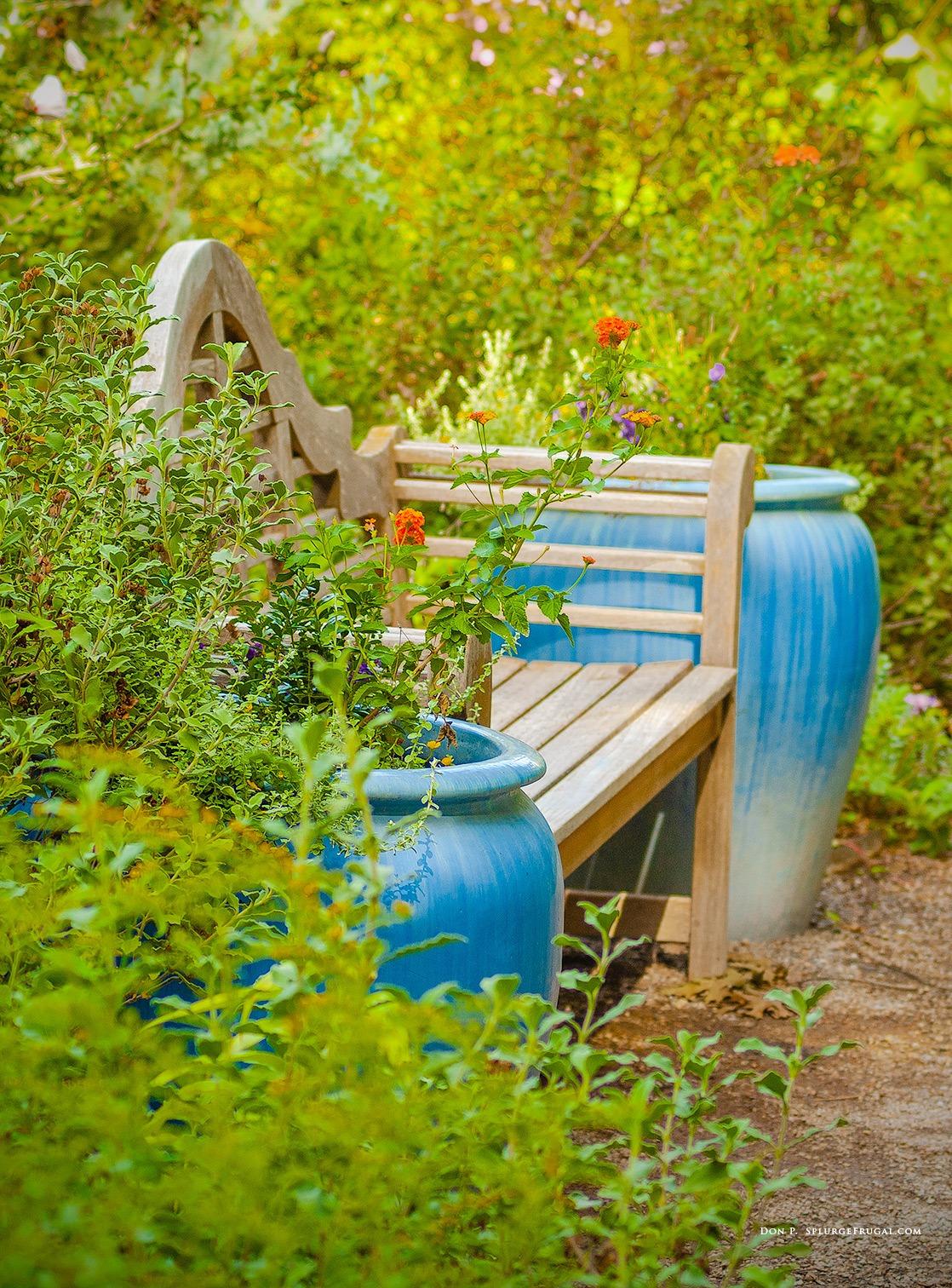 A setting in ABQ BioPark Botanic Garden